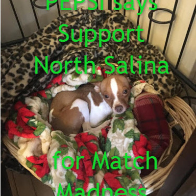 Sandy Beverly's puppy is barking for North Salina